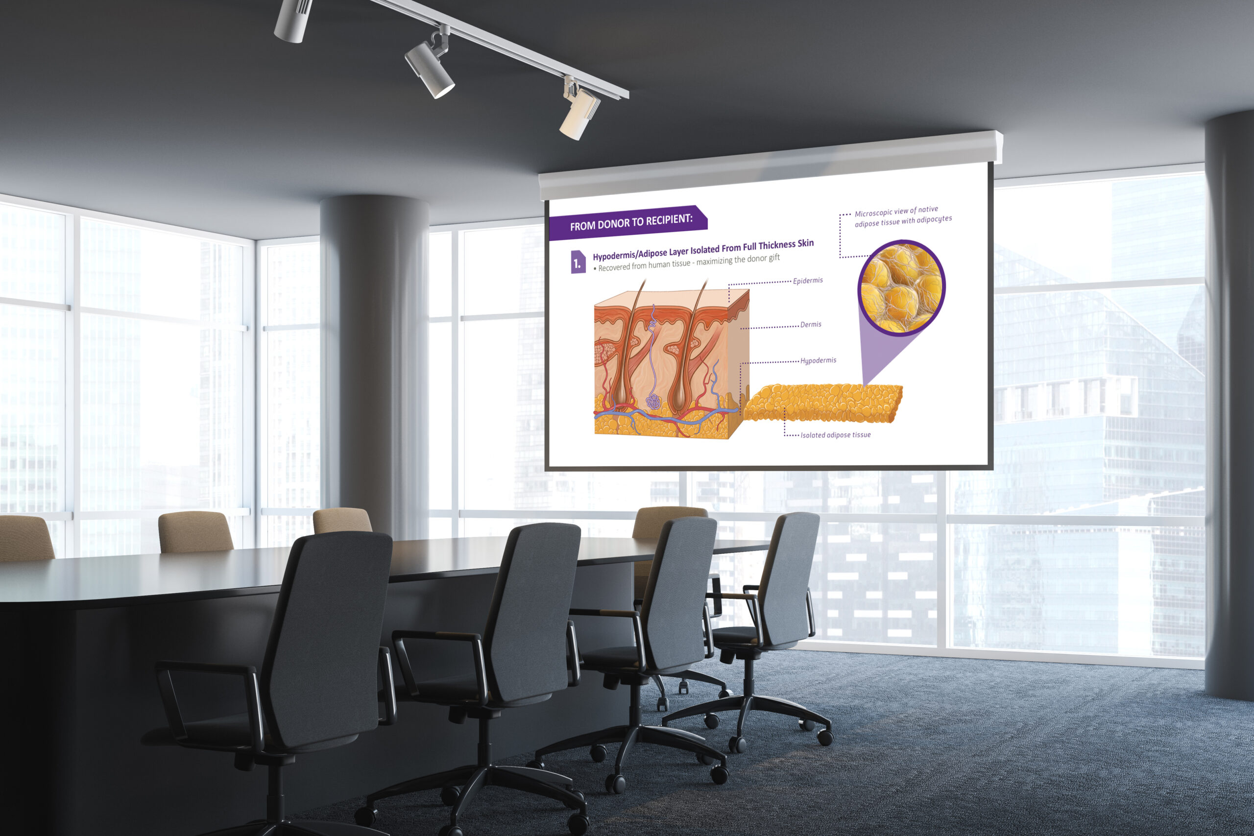 MTF Biologics Leneva Product Launch